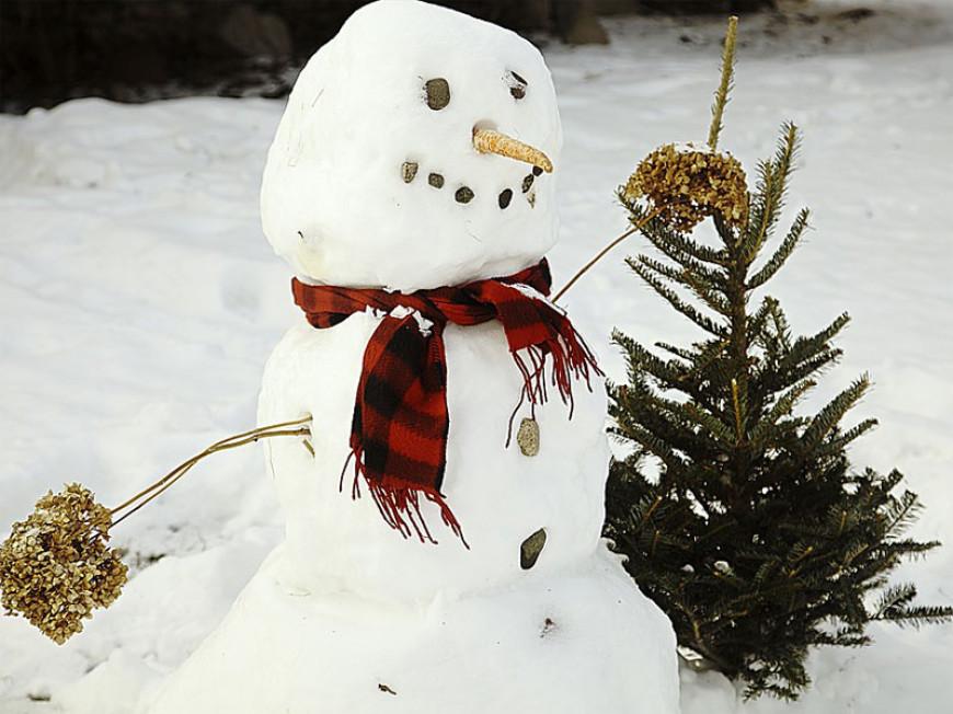 Sněhulákovy starosti