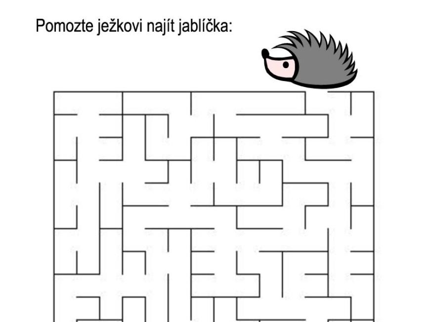 Bludiště – ježek