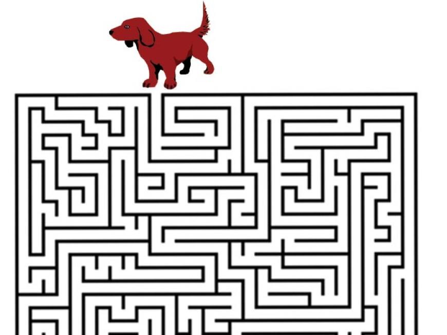 Bludiště – pes hledá kost