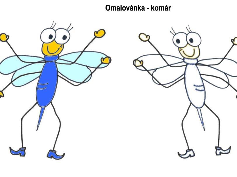 Omalovánka – komár