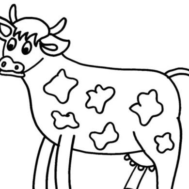 Omalovánka – kráva