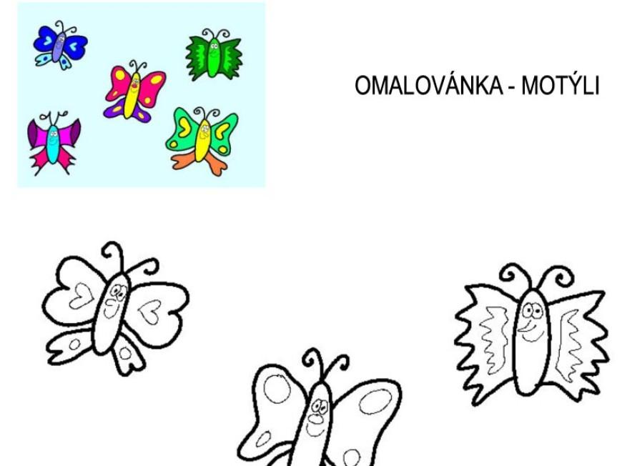 Omalovánka – motýli