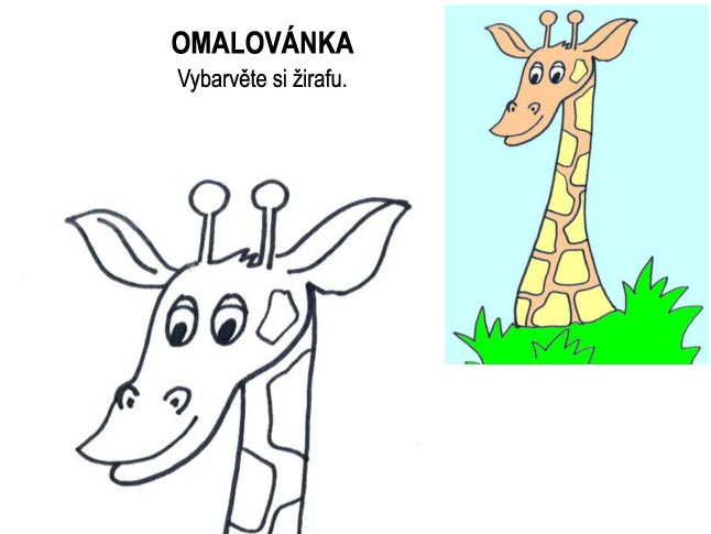 Omalovánka – žirafa