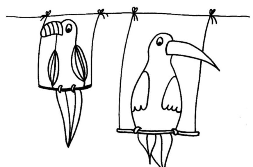 Papoušci – omalovánka a doplnění písmenka
