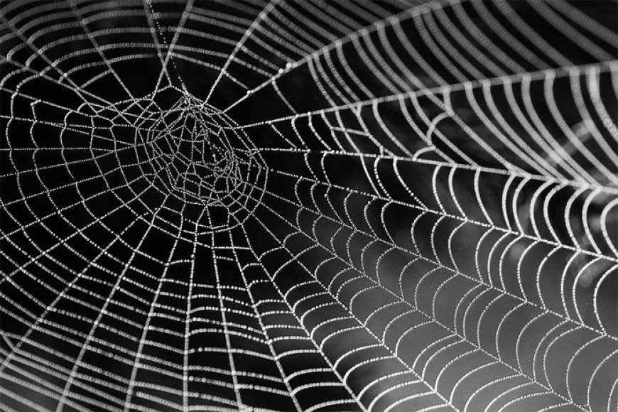 Básnička o pavučině