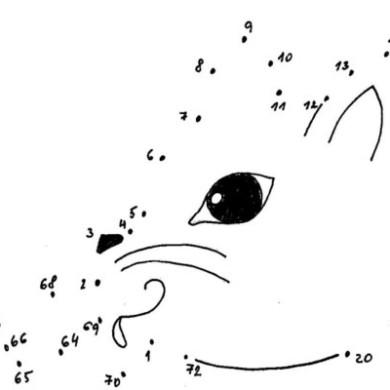 Spojovačka – zvířátko