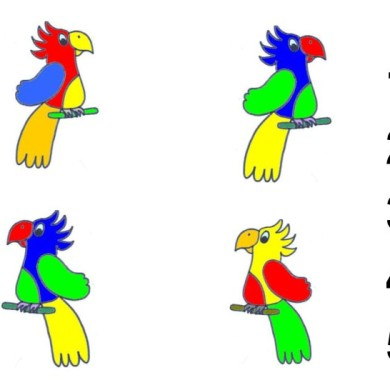 Kteří papoušci jsou stejní?
