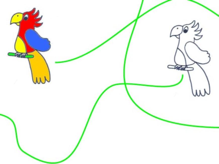 Vybarvi papoušky