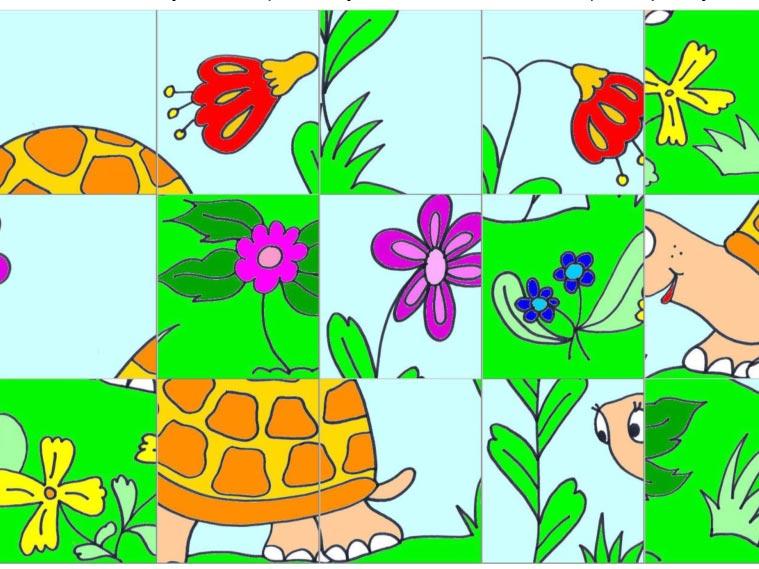 Želva – skládačka