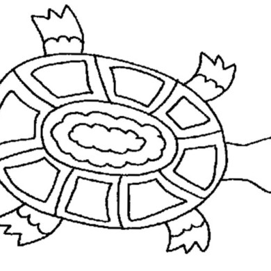Želví omalovánka