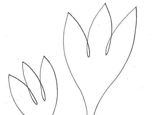 Nakresli jedním tahem – ocúny