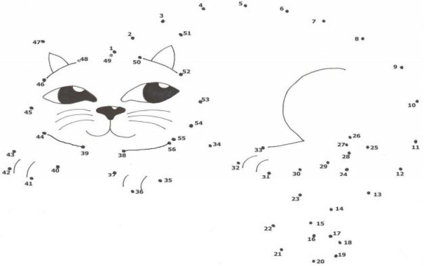 Spojovačka – kočka