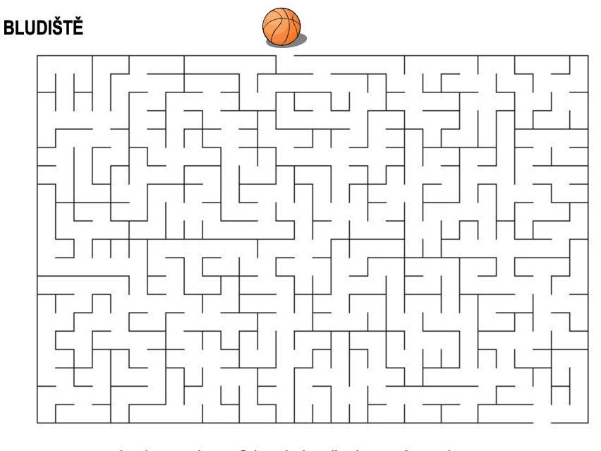 Bludiště – basketbalový míč