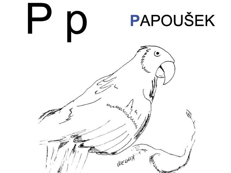 Malujeme abecedu – P