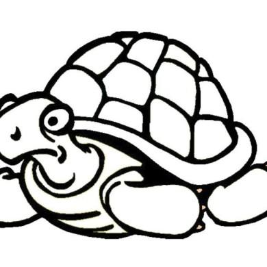 Vybarvěte si želvu