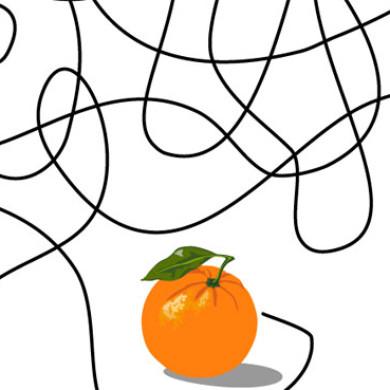 V létě je ovoce nejlepší. Ale které?