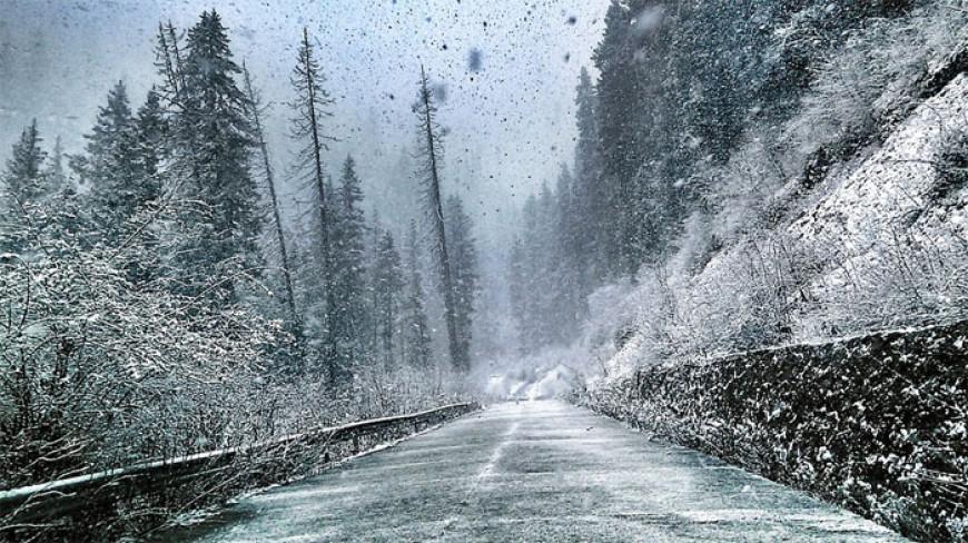 Básnička o sněhové kalamitě