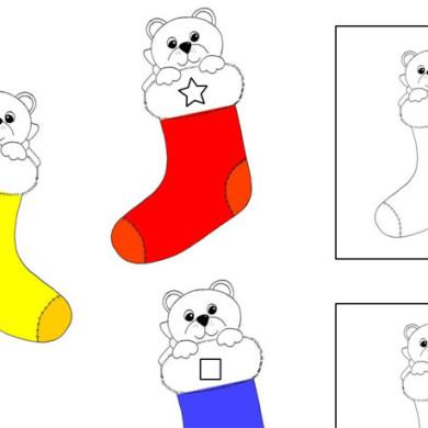 Medvídci – tvary a barvy