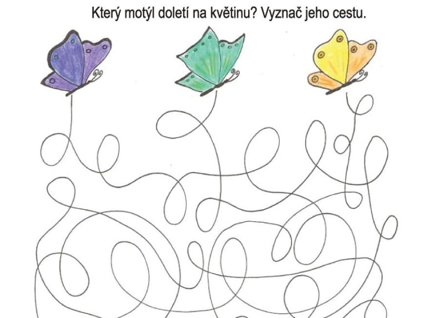 Který motýl doletí na květinu?