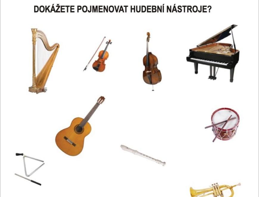 Poznáte hudební nástroje?
