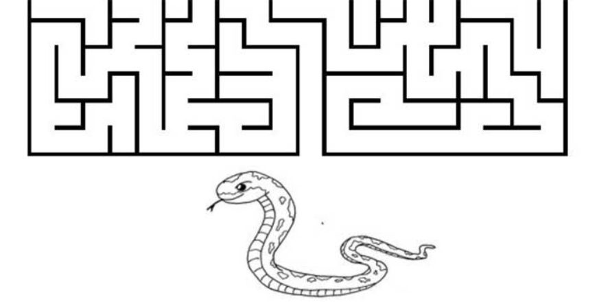 Najdi si cestu za zvířátky: 1 + 5 listů