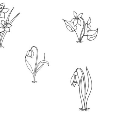 Osmisměrka – jarní květiny
