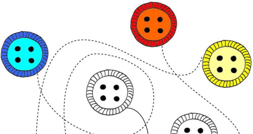 Najdi cestu a vybarvi knoflíky – 10 pracovních listů