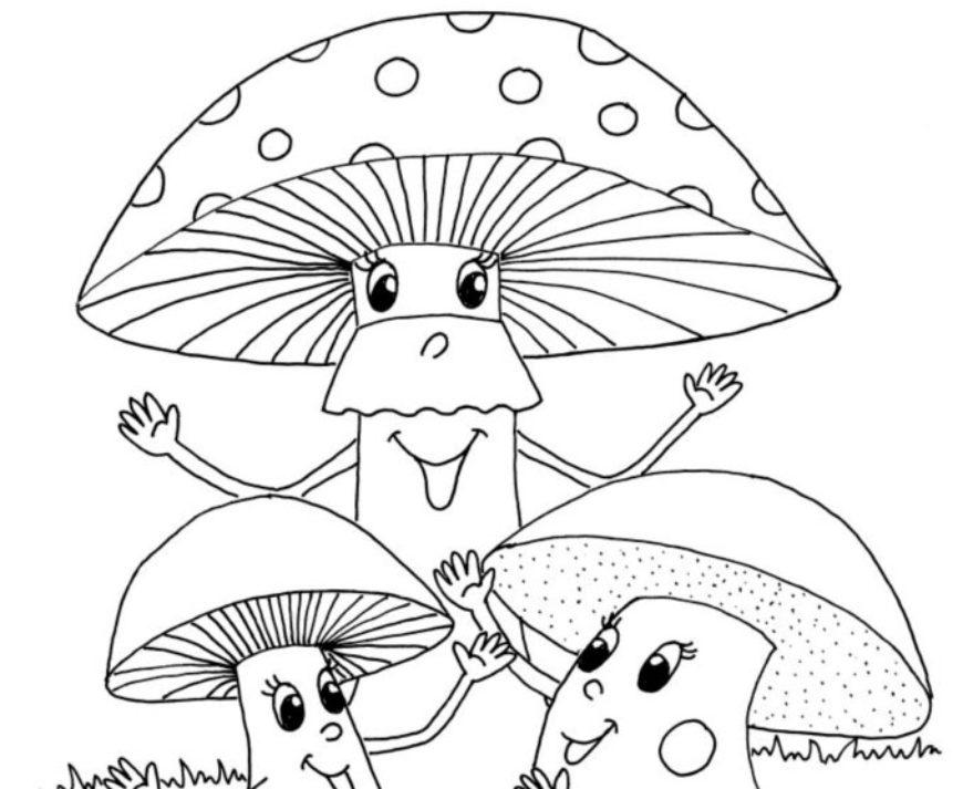 Rej hub – najdi deset rozdílů